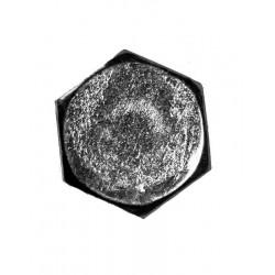 BONNET GOK - DIAM. 12
